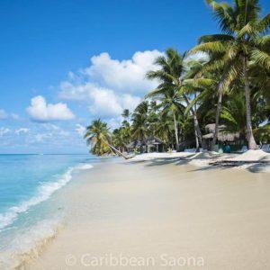 Isla Saona Playa